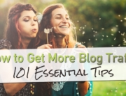 How To Get More Blog Traffic: 101 Essential Tips